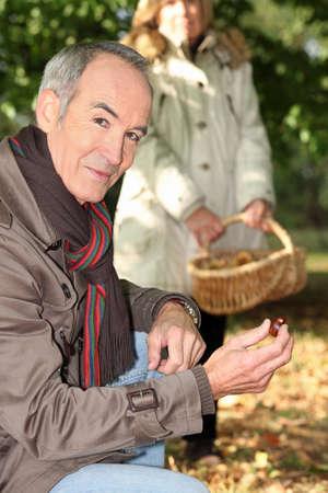 Gathering chestnuts photo
