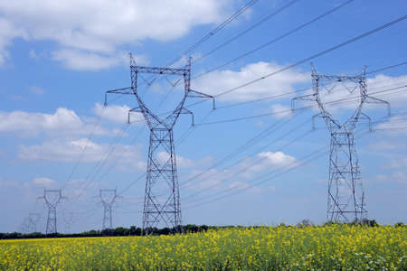 long lasting: Electricity pylons in a field