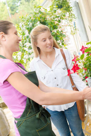 woman s bag: Advising a young florist customer