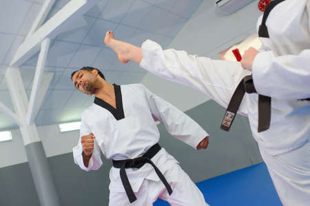 martial: Martial artists