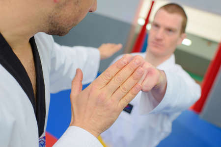martial: Martial arts enthusiasts