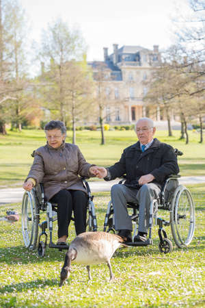 fart: elderly couple in the park Stock Photo