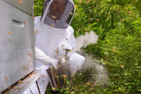 abeja: utilizando un fumador de abeja