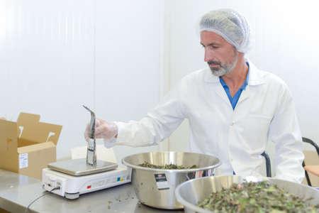 higiene: trabajador alimentos procesados Foto de archivo