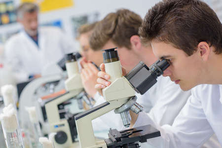 Row of students using microscopes