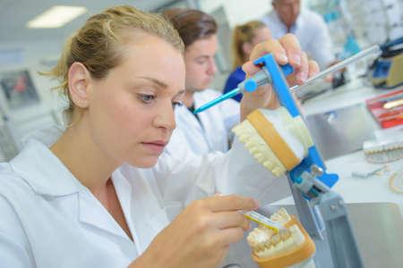 molares: t�cnico dental mujeres en el trabajo Foto de archivo