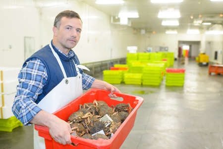 contractual: seafood in the plastic box Stock Photo