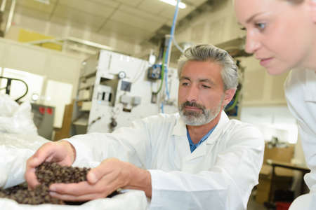 food industry: Man scooping up a handful of coffee grains