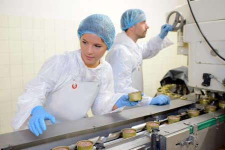 食べ物: 食品製造ラインの労働者