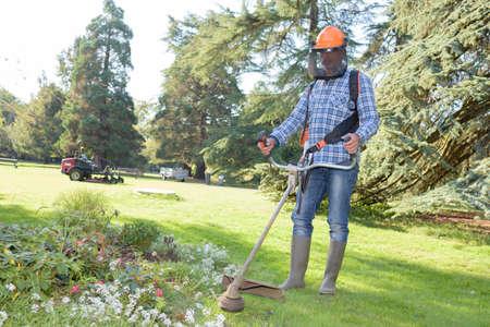 ground: Man strimming around flower bed Stock Photo