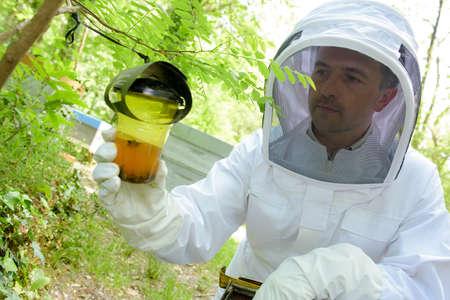 bait: Beekeeper looking at wasp bait