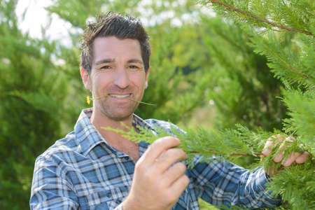 funny guys: Portrait of man holding branch of tree, flower in his mouth