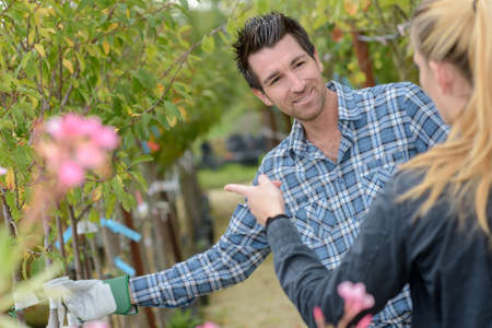 horticulturist: Horticulturist with customer