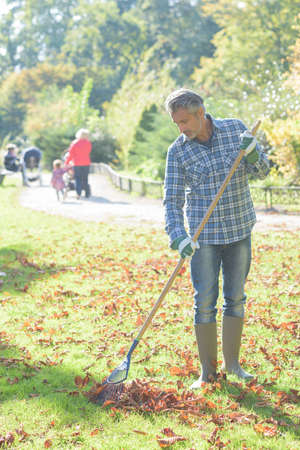 dead leaves: Man raking dead leaves