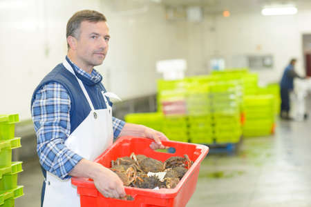 Man carrying crate of crabs Stock Photo