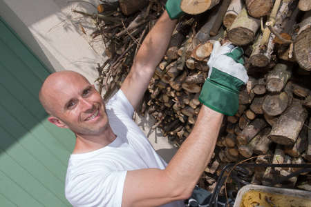 tidying: smiling man tidying up wood logs