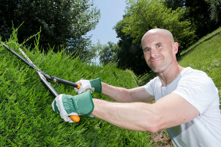 grass cutting: middle-age man grass cutting in the garden Stock Photo