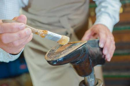 pegamento: zapatero pegamento