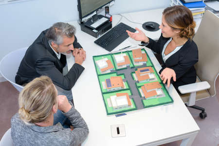 housing lot: meeting with the developer