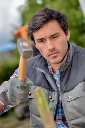hammering: Hammering on the garden