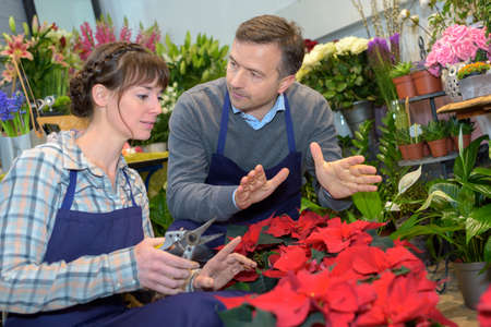 florists: Male and female florists in discussion