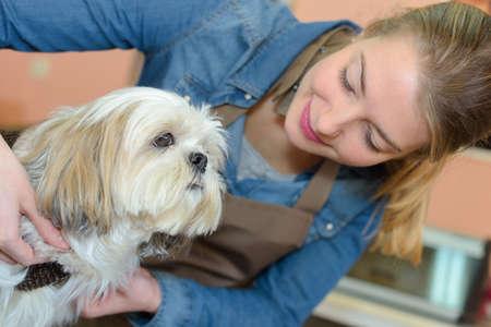 groomer: Female animal groomer with dog