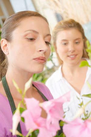 serf: florist with customer Stock Photo