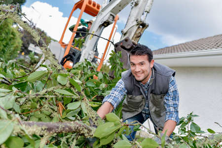 Man working with hedge cuttings