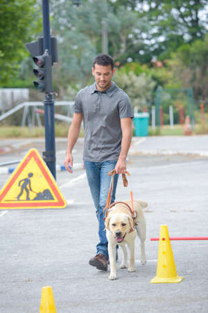 Man walking dog Stock Photo