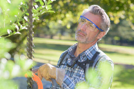 trimmer: Man using hedge trimmer