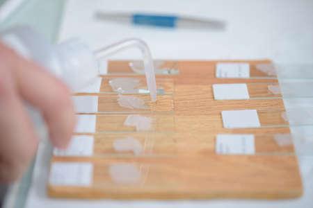analysing samples on slides