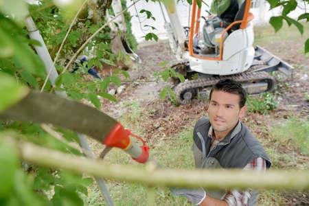 긴 취급 톱을 사용하는 정원사가 나무를 가지 치기