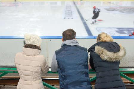 spectating: People spectating ice hockey game