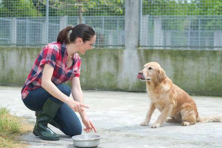 malnutrition: animal shelter volunteer feeding the dogs