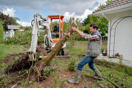 정원에서 나무를 지우는 것