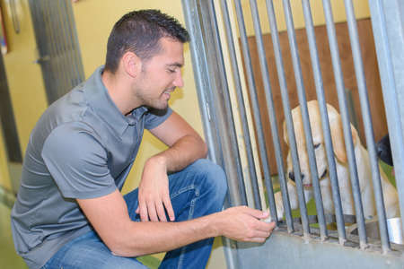 animal carer and dog Stock Photo