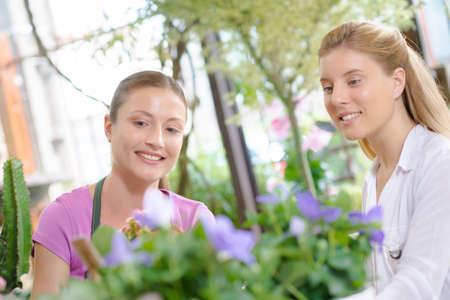 siervo: florista con el cliente