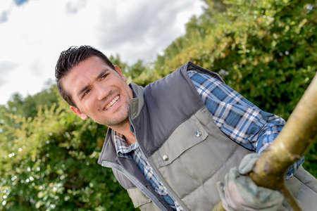 heaving: Gardener pulling a branch Stock Photo