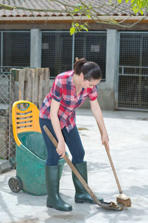 cleaning time for kennel assistant