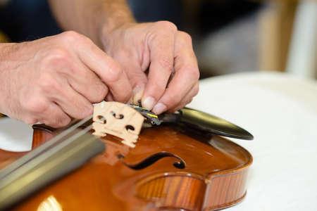 putting new violin bridge