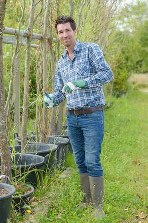 breeding of plant varieties