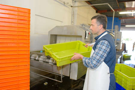 laborer: laborer cleaning plastic crates