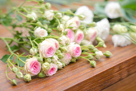 plantlife: Cut roses on bench Stock Photo
