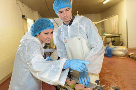 operative: Factory operatives pointing down conveyor line