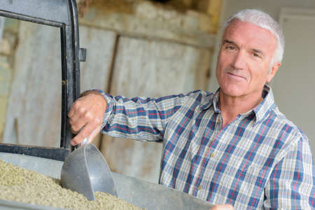 complement: Farmer scooping dry feed