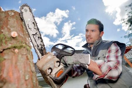 lumberman: Man chainsawing trunk of tree Stock Photo