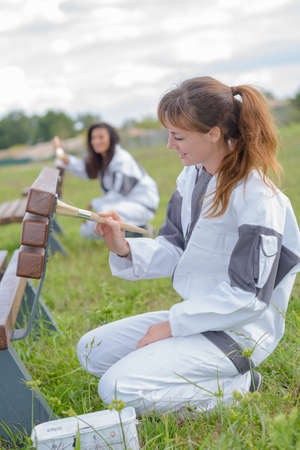 contractual: women painting the bench