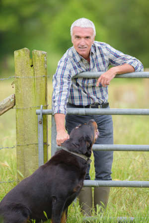 cattle guard: farmer in the field with a dog