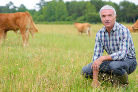 man posing outdoor with cows