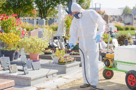groundskeeper: killing weeds in cemetery Stock Photo